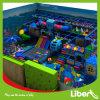 Het aangepaste Park van de Trampoline van de Gymnastiek van het Ontwerp van de Lay-out Vrije In het groot Binnen
