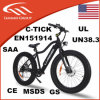 Elektrische fette Fahrräder