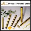 Fabricante del profesional del tubo del acero inoxidable del precio competitivo 304