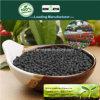 Il carbonio di Kingeta ha basato il fertilizzante composto NPK 28-6-6 per il fiore
