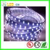 3000lm-3500lm/Meter LED 5630 SMD LED Strips