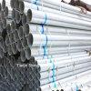 Bestes Price von Galvanized Steel Pipe (Garde Q235)