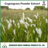 Poudre Cogongrass / Imperata Cylindrica extrait 5 : 1, 10 : 1