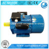 Enige CEI Standard Efficiency Motor van Phase 220V 50/60Hz (yc-90l-4)