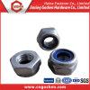 Acier inoxydable 316 lourd Hex nylon écrou de blocage M6 - M20