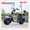 2018 CEE aprovou City Coco Es8004viiieec Scooter eléctrico