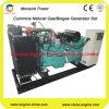 Bas groupe électrogène de gaz naturel de la consommation 100kw