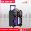Shinco 2018 Blockbuster best seller de altavoz Bluetooth Trolley con coloridas luces LED