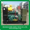 Tipos Diesel de Syngas do biogás do gás natural de jogo de gerador da energia eléctrica