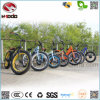 脂肪質のタイヤのスクーターが付いている良質のバイクの電気自転車