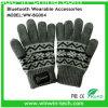 Het beste Goed van de Handschoenen van Bluetooth van het Ontwerp Opvlammende voor de Winter