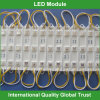 diodo emissor de luz Module Light de 12V Waterproof Piranha