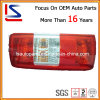 Auto Tail Lighting / Auto Tail Lamp para Transit 03 Tail Lamp (LS-FDL-020)