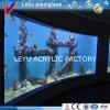 AquariumのためのプレキシガラスSheet Board
