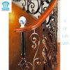Qualität stellte bearbeitetes Eisen-Treppen 001 her