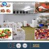 最もよい価格の工場農業の農場の携帯用冷蔵室