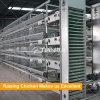 Le contrôle complet de la volaille Ferme de délestage H type cage de la couche de poulet