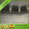 Agriculture를 위한 중국 Hot Sell Cheaper Price Black Anti Hail Net