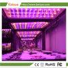 LED de Fazenda Vertical crescer a luz com 49W