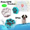 Le meilleur mini GPS traqueur de la qualité IP66 pour les animaux familiers (V30)