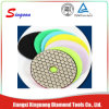 China Manufacturer 4inch Dry Diamond Polishing Pads