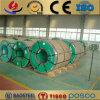 Bobina de aço laminada a alta temperatura principal da qualidade ASTM A480 316h Stainelss