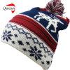 Chapeau de tricotage de Beanie de jacquard