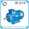 Мотор AC 2p индукции 3 участков Yali 75kw 100HP электрический асинхронный