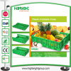 Contenitore pieghevole verde per le frutta e le verdure