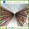 강철 구조물 디자인 가금 농장 헛간 건설사업 중국 공급자