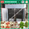 Máquina del secador de Fruit&Vegetable del calor de la electricidad del acero completamente inoxidable