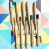 A utilização diária de Dentes Ambiental feita de bambu
