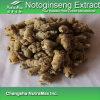 Выдержка 100% естественная Notoginseng (4: 1, 10% Notoginsenoside)