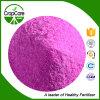 Pó do fertilizante de NPK 17-17-17+Te apropriado para o vegetal