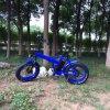 '' bici elettrica del pneumatico grasso 20 con il motore senza spazzola di 36V 350W