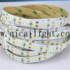 Streifen der Shenzhen-Fabrik-IP65 2835 LED mit Nano Beschichtung
