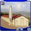 Casa de galinha da construção de aço dos edifícios de frame de aço