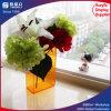 Rectángulo de acrílico modificado para requisitos particulares de la flor del color con la tapa