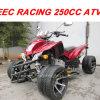 EEC 250CC участвуя в гонке квад ATV (MC-365)
