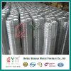 Maglia Rolls/fabbrica saldata dell'acciaio inossidabile del Rolls della rete metallica