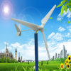 Salesのための全体的なHot Sales Free Energy 2000W Hawt Wind Turbine System