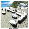 Sofà esterno del rattan della mobilia di Ugo impostato dalla vendita poco costosa del fornitore del giardino della Cina