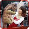 Marioneta robótica del dinosaurio del equipo del patio de los niños