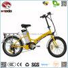 Véhicule de pédalier à bicyclette à vélo en vélo de ville à moteur
