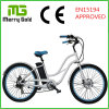 숙녀를 위한 합금 6061 프레임 Ebike 바닷가 함 전기 자전거 36V 250W