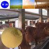 Polvere della proteina del grado dell'alimentazione animale