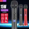 De Microfoon van Bluetooth met de Nieuwe 15W Output van de Trompet, met FM