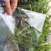 Película suave del PVC del claro normal para la carpeta dentro de las paginaciones
