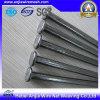 직류 전기를 통한 Common Nails 또는 Roofing Nais/Concrete Nials