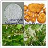 100% Natuurlijke Resveratrol; Reuze Uittreksel Knotweed